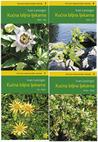 Kućna biljna ljekarna (komplet, 4 knjige)