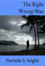 The Right Wrong Man by Pamela S. Wight