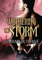 Wethering the Storm (The Storm, #2) Pdf Book
