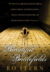 Beautiful Battlefields Pdf Book