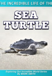 The Incredible Life of the Sea Turtle Pdf Book
