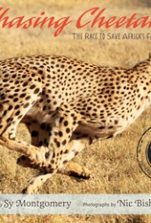Chasing Cheetahs: The Race to Save Africa's Fastest Cat Book Pdf