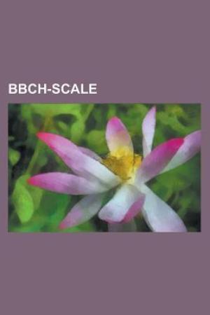 Bbch-Scale: Stocksbridge Park Steels F.c., Vancouver Whitecaps Fc, Sun Hei Sc, Memphis Storm, Fc Kavkaztransgaz-2005 Ryzdvyany