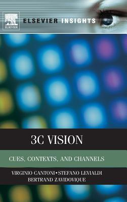 3C Vision: Cues, Contexts, and Channels
