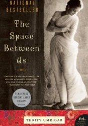 The Space Between Us Pdf Book
