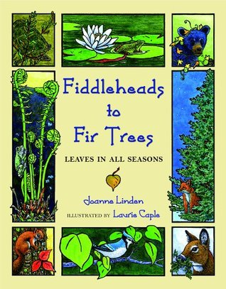 Fiddleheads to Fir Trees: Leaves in All Seasons