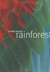 Rainforest Pdf Book
