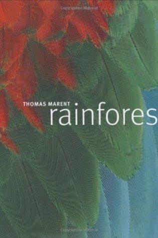 Rainforest Book Pdf ePub