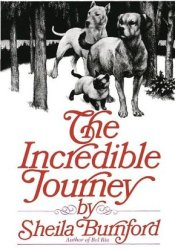 The Incredible Journey Pdf Book