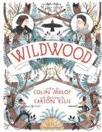 Wildwood (Wildwood Chronicles #1)