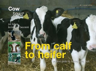 From calf to heifer: a practical guide for rearing young stock