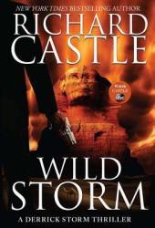 Wild Storm (Derrick Storm, #5)