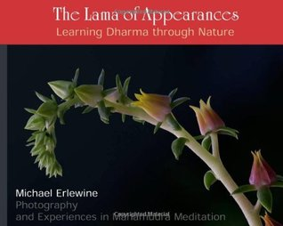 The Lama of Appearances: Learning Dharma Through Nature