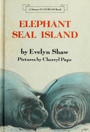 Elephant Seal Island