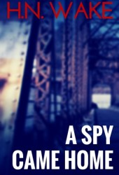 A Spy Came Home (Mac Ambrose, #1)