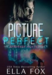 Picture Perfect (Renegade Saints, #1) Pdf Book