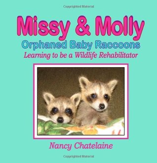 Missy & Molly, Orphaned Baby Raccoons: Learning to be a Wildlife Rehabilitator