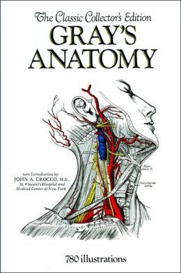 Freddy Stark 9780762440733 Com Start Exploring Gray S Anatomy A Fact Filled Coloring Book 475900 By Henry