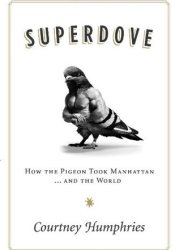 Superdove: How the Pigeon Took Manhattan ... And the World Pdf Book