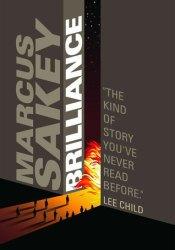 Brilliance (Brilliance Saga, #1) Pdf Book