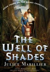 The Well of Shades (The Bridei Chronicles, #3) Pdf Book