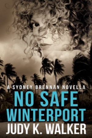 No Safe Winterport (Sydney Brennan, #4)