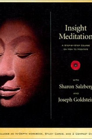 Insight Meditation: A Step-by-step Course on How to Meditate Book Pdf ePub