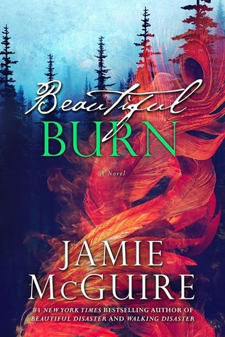 Beautiful Burn (The Maddox Brothers, #4)