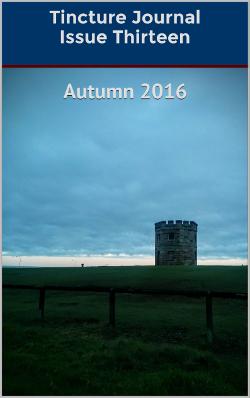 Tincture Journal, Issue Thirteen, Autumn 2016