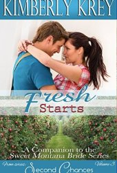 Fresh Starts: Bree's Story (Second Chances #3)