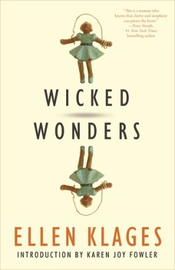 Image result for wicked wonders book