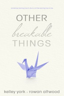 Image result for other breakable things