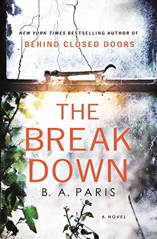Image result for The breakdown novel