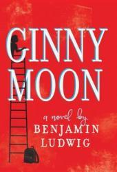 Ginny Moon Book Pdf
