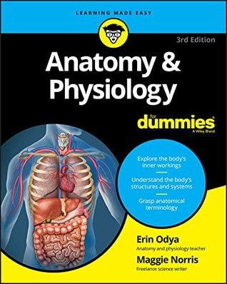 Anatomy Physiology For Dummies By Donna Rae Siegfried