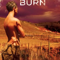 ~Pre-Release Review-Controlled Burn by Erin McLellan~