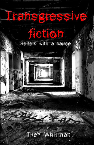 Transgressive fiction : rebels with a cause