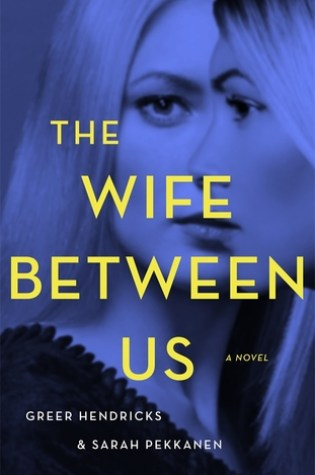 The Wife Between Us Book Pdf ePub
