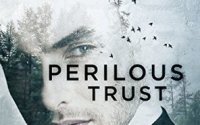 RELEASE BLITZ:  Perilous Trust by Barbara Freethy