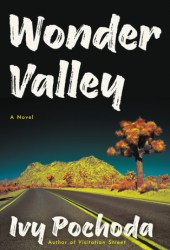 Wonder Valley Pdf Book