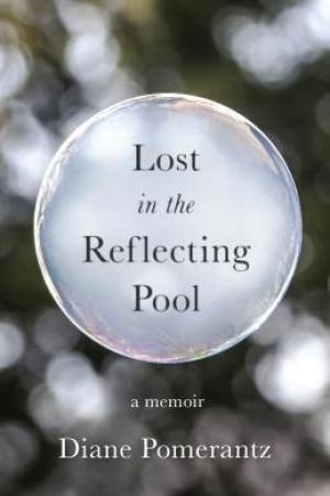Lost in the Reflecting Pool pdf books