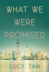 What We Were Promised Pdf Book