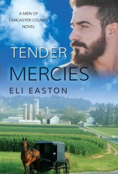 Tender Mercies (Men of Lancaster County, #2) Pdf Book