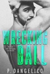 Wrecking Ball (Hard to Love, #1) Book Pdf
