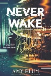 Neverwake (Dreamfall #2)