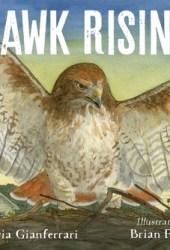Hawk Rising Pdf Book