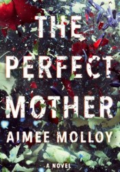 The Perfect Mother Pdf Book