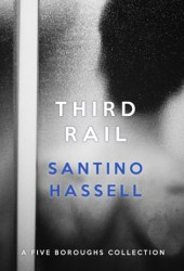 Third Rail (Five Boroughs, #5.5) Pdf Book