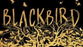 Blackbird – N.D. Gomes