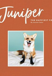 Juniper: The Happiest Fox Pdf Book